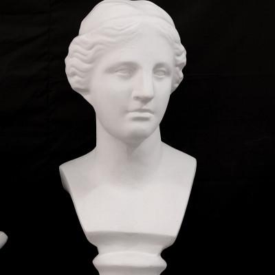 Đầu tượng thạch cao luyện thi kiến trúc, mỹ thuật MS01