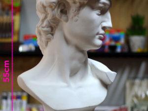 Đầu tượng thạch cao David MS45