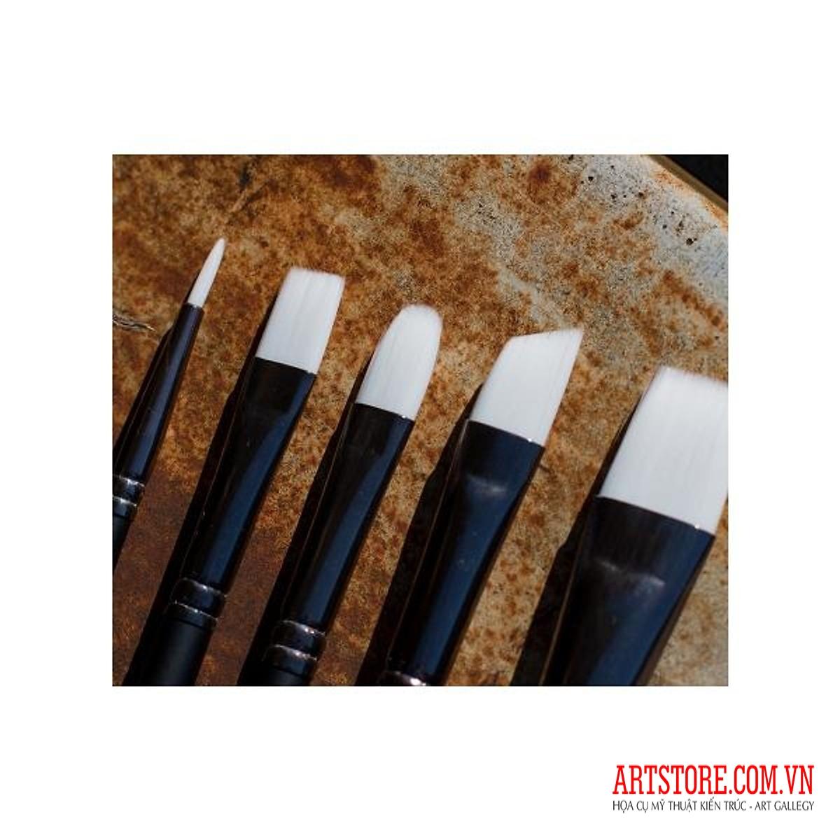 [TK] Bộ 5 Cây Cọ Vẽ Cao Cấp Angelus Paint Brushes